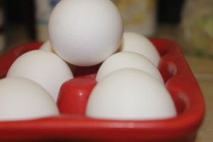 Eggs - great protein source!